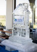 Ice Sculpture_Chris Currier